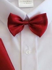 7d3930f8170b5 Cravate enfant, lavallière et nœud papillon bébé pas cher
