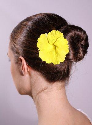 univers coiffure jaune