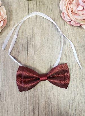 cravate et noeud papillon bordeaux